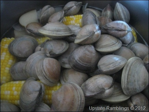 adding the clams to the clam bake
