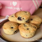 Cooking with Greek Yogurt Review and Giveaway with Blueberry Muffin Recipe