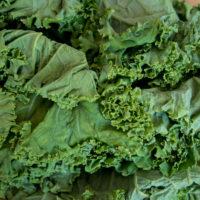 Kale & Garlic Scape Pesto