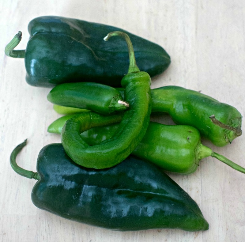 Fresh chile peppers