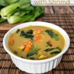 Thai Soup with Shrimp