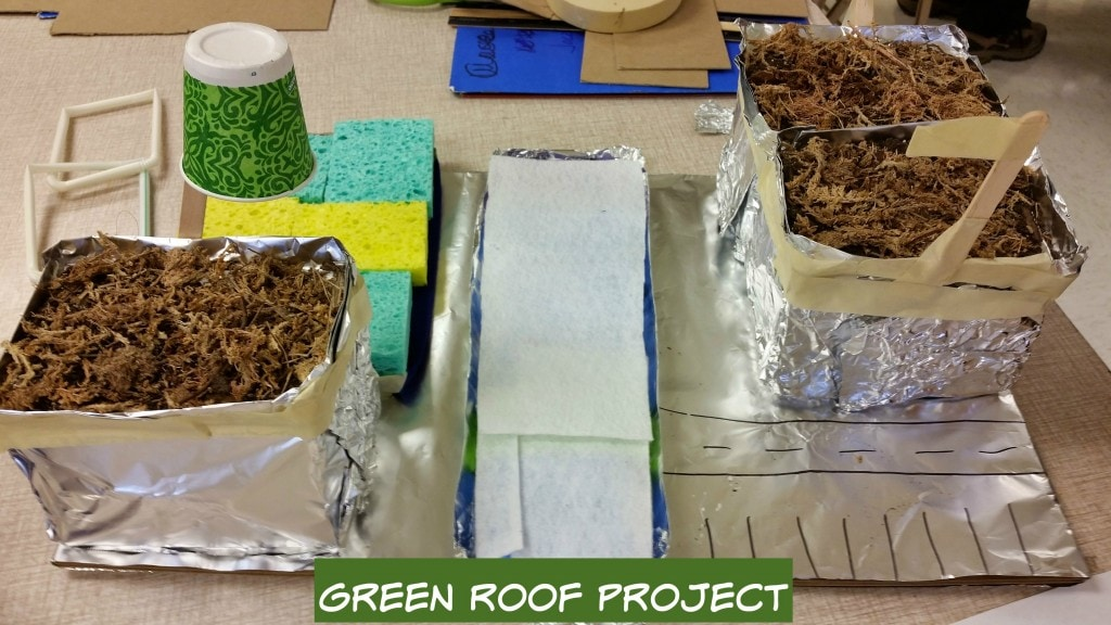 green roof science project for teens