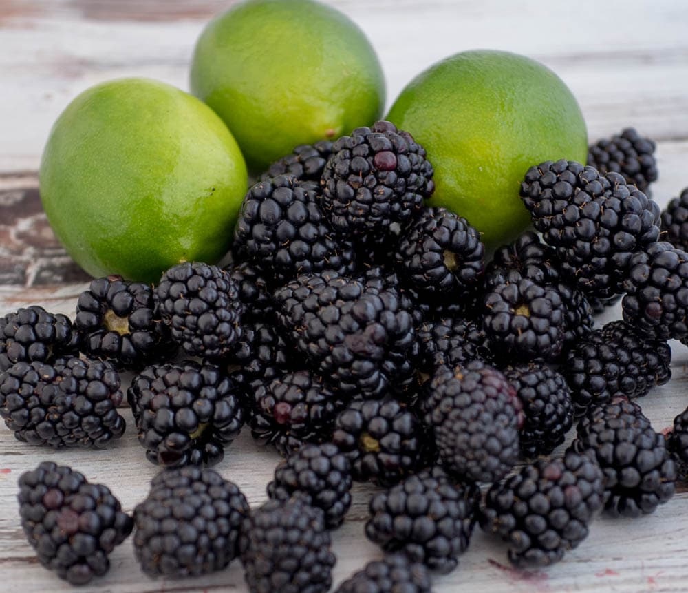 Limes and Blackberries for Limeade Recipe