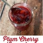 Yogurt Parfait with Plum Cherry Compote