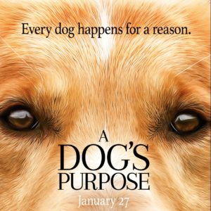 A Dog's Purpose Movie with Giveaway